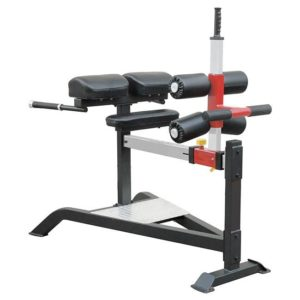 Element Fitness IRON Glute Ham Bench
