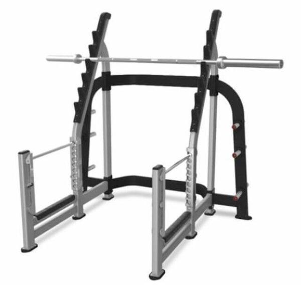 Nautilus Inspiration Olympic Squat Rack